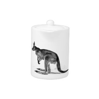 kangaroo boxed in square