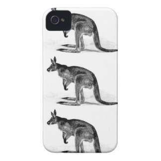kangaroo boxed in square iPhone 4 cover