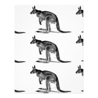 kangaroo boxed in square letterhead