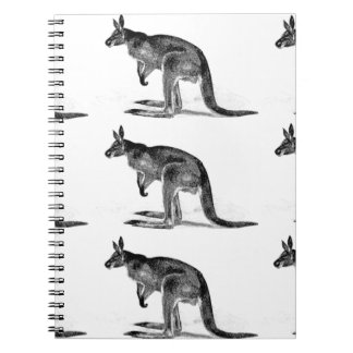 kangaroo boxed in square notebook
