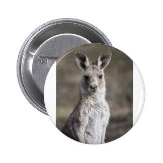 Kangaroo Button