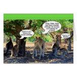 Kangaroo Family Happy Birthday Humour