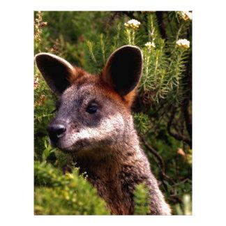 Kangaroo Letterhead