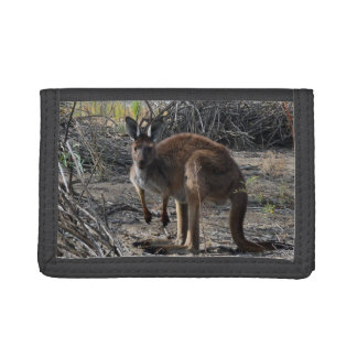Kangaroo, Meanwhile At The Billabong, Trifold Wallet