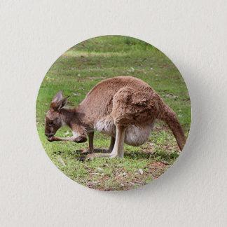 Kangaroo, Outback Australia 2 Inch Round Button