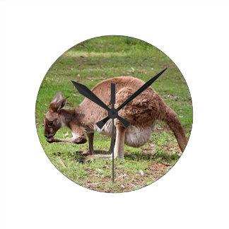 Kangaroo, Outback Australia Round Clock
