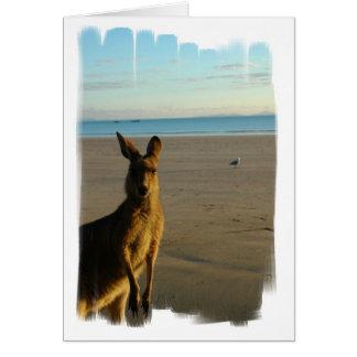 Kangaroo Photo Card