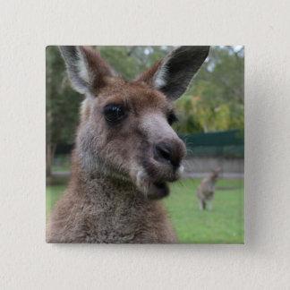 Kangaroo selfie 2 inch square button