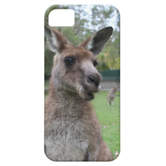 Kangaroo selfie iPhone 5 covers