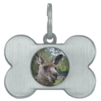 Kangaroo selfie pet name tag