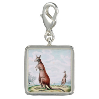 Kangaroos Vintage Drawing Charms