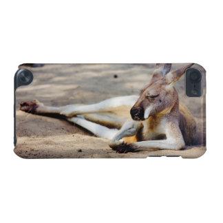 Kangourou de sommeil, photographie d'animal de coque iPod touch 5G