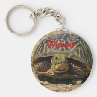 Kansas Box Shell Turtle Key Chain!! Basic Round Button Keychain