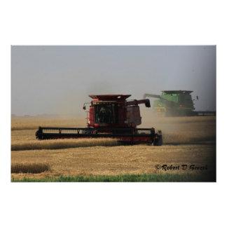 Kansas Harvest Time Photo Enlargement