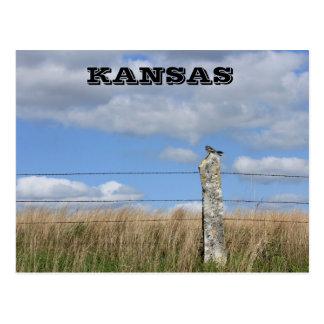 Kansas Hawk on a Lime Stone fence Post. Post Card