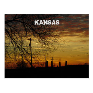 Kansas Sunset with a tree POST CARD