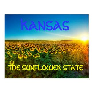 "Kansas ""The Sunflower State' Postcard"