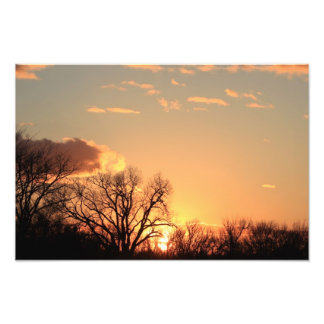 Kansas Tree silhouette, with cloud's Enlargement Photo Print
