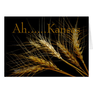 Kansas Wheat Card