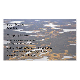 Kanuti Flats Business Card