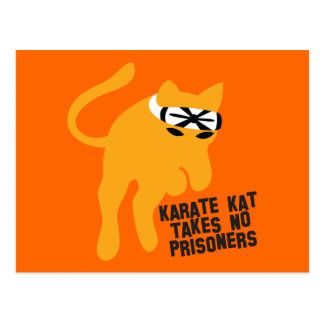 Karate KAT (cat) takes no prisoners Postcard
