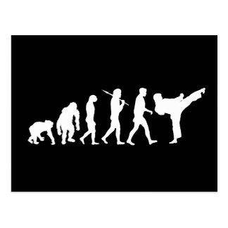 Karate lovers Dojo training gift Postcard
