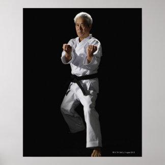 Karate master, portrait, studio shot 2 poster