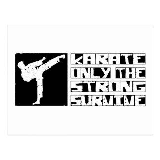 Karate Survive Postcard