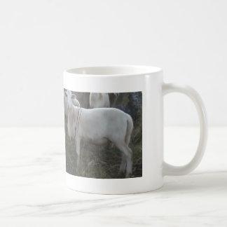 Katahin Hair Sheep Coffee Mug