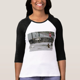 katrina dog t-shirt