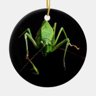 Katydid Ceramic Ornament