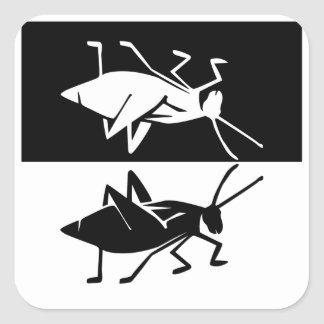 Katydid design 2 black and white square sticker