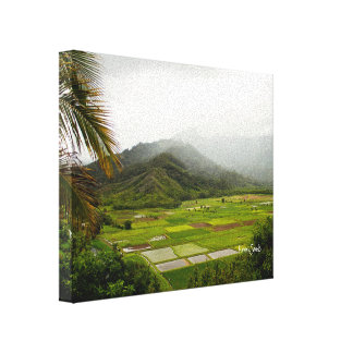 Kauai, Hawaii Lush Fields Landscape Canvas Print