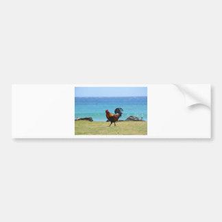 Kauai rooster bumper sticker