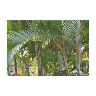 Kauai Tropical Palm Trees Canvas Print