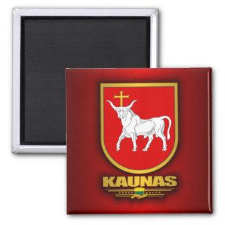 Kaunas Magnet