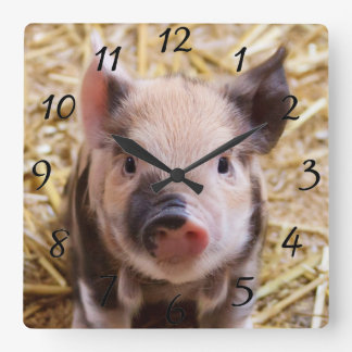 Kawaii cute adorable farm baby piglet pig animal wall clock