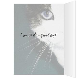 Keen-Eye Kitty Template Greeting Card