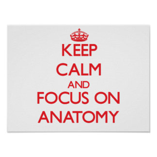 Keep calm and focus on ANATOMY Poster