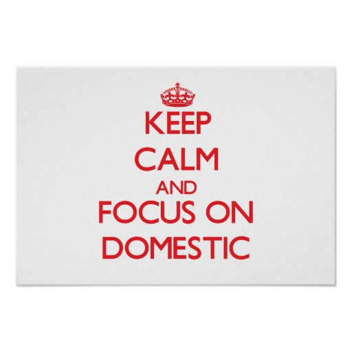 Keep Calm and focus on Domestic Posters