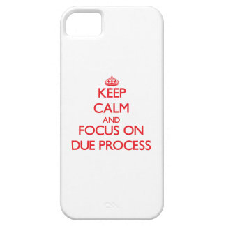 Keep Calm and focus on Due Process iPhone 5 Case
