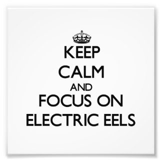 Keep Calm and focus on Electric Eels Photo Art
