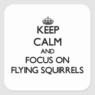 Keep Calm and focus on Flying Squirrels Square Sticker