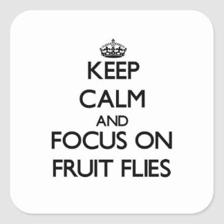 Keep Calm and focus on Fruit Flies Square Sticker