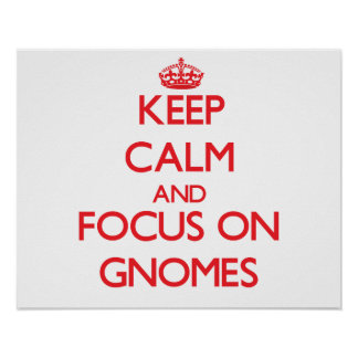 Keep Calm and focus on Gnomes Print