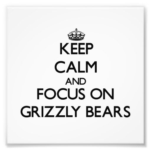 Keep calm and focus on Grizzly Bears Art Photo