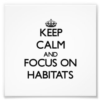 Keep Calm and focus on Habitats Photographic Print