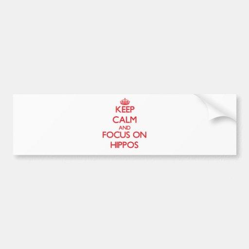 Keep calm and focus on Hippos Bumper Sticker