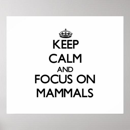 Keep Calm and focus on Mammals Print