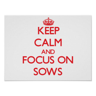 Keep Calm and focus on Sows Print